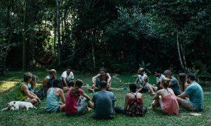 mental health effects of ayahuasca drug rehab alcohol rehab ayahuasca addiction center